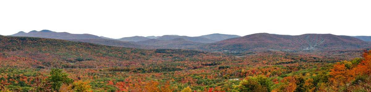 Fall Colors In Windham Valley