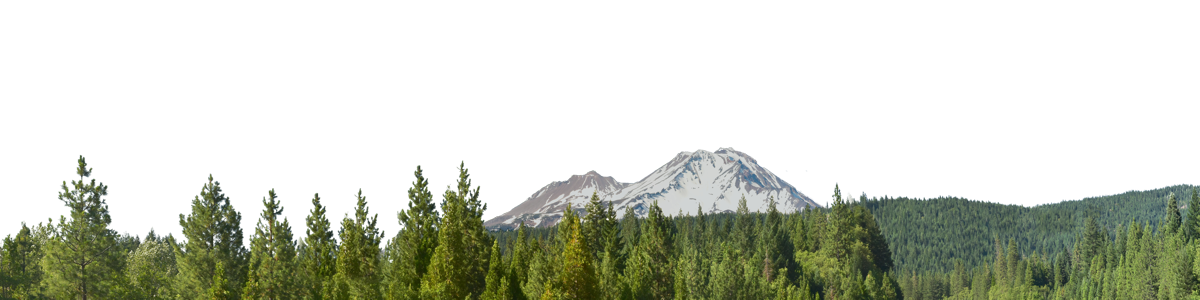 Mount Shasta From The South Right